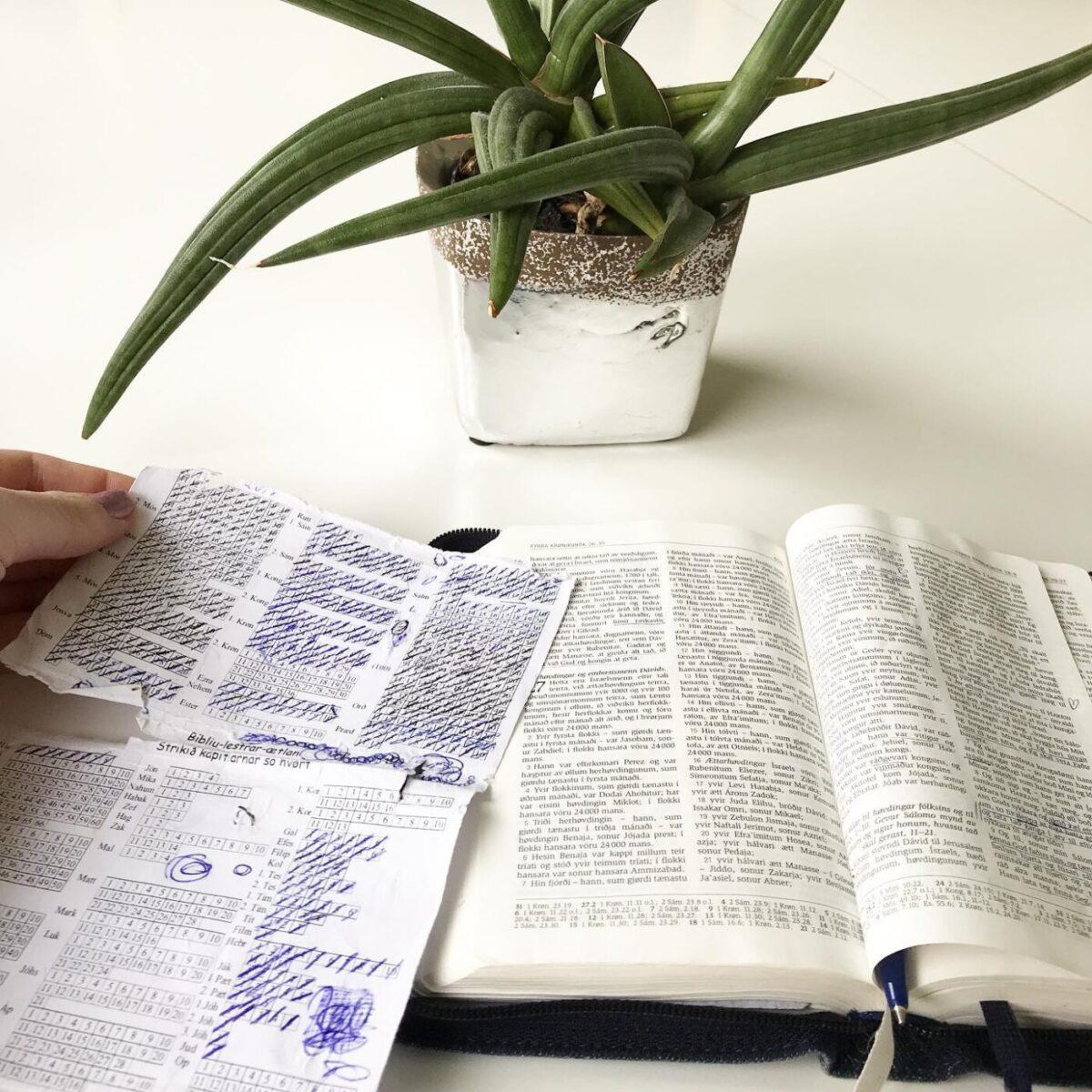 BÍBLIU-LESIÆTLANIR